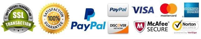 safe pay online